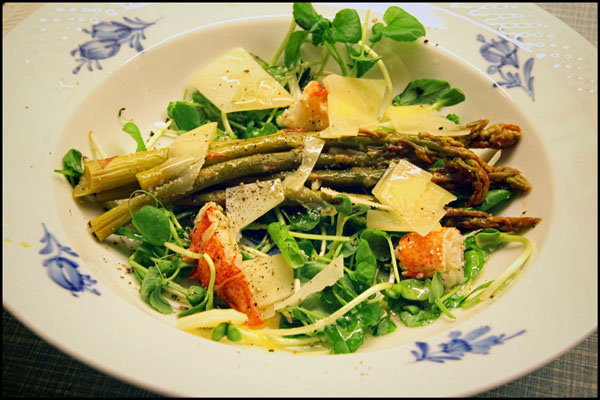 Asparges med Hummer, Parmesan, Urter og Skud